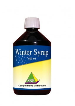 Winter Syrup 500 ml
