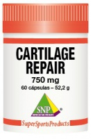 Cartilage Repair